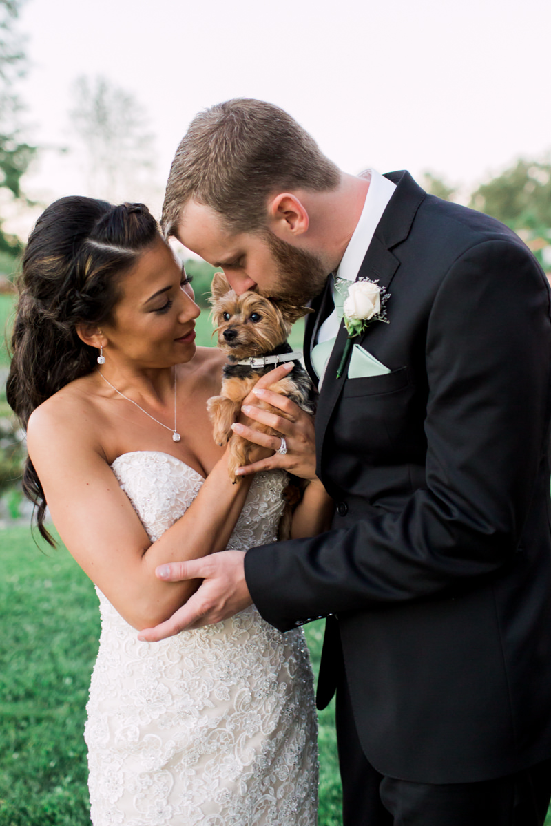 wedding portrait with pets