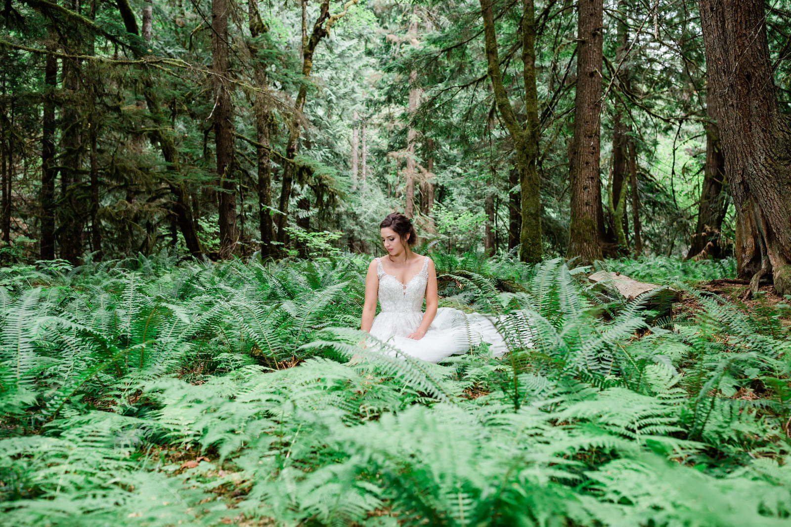 bride surrounded by foliage in a forest wedding